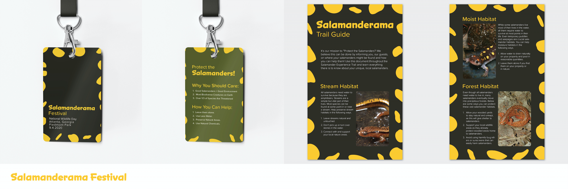 Several photos of laniard card and a info sheet about the salamander festival.